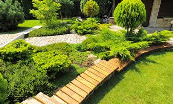 Austin Texas Landscape Design - 1500+ Trend Home Design - 1500+ ...